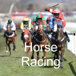 Finding The Latest Horse Racing News